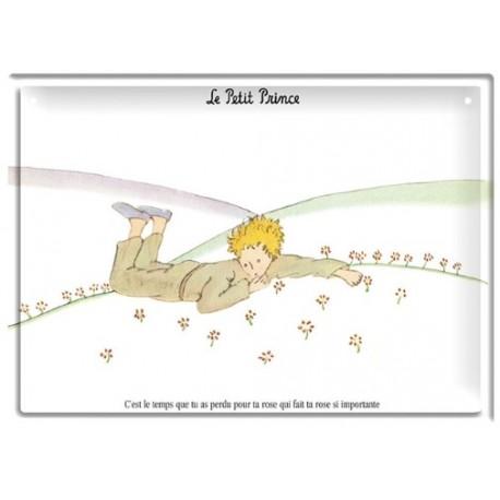 Plaque métal - Les paquerettes - Le Petit Prince