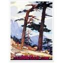 Affiche - Corse - Col de Bavella