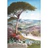 Affiche 50x70 - Golf Club Hyères